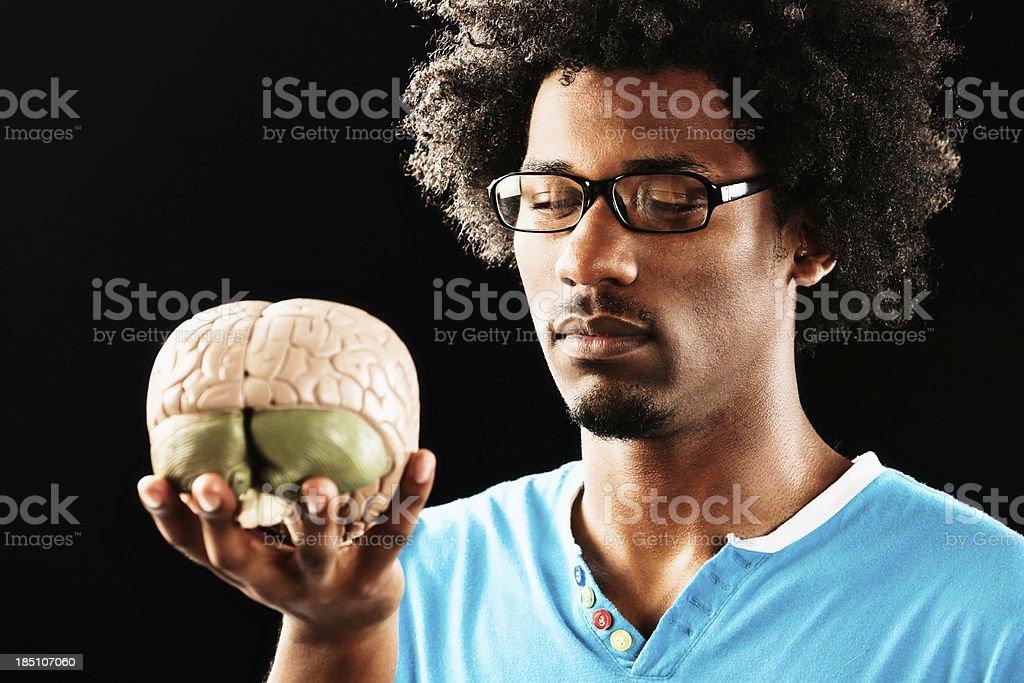 Serious young man studies anatomical model of human brain royalty-free stock photo