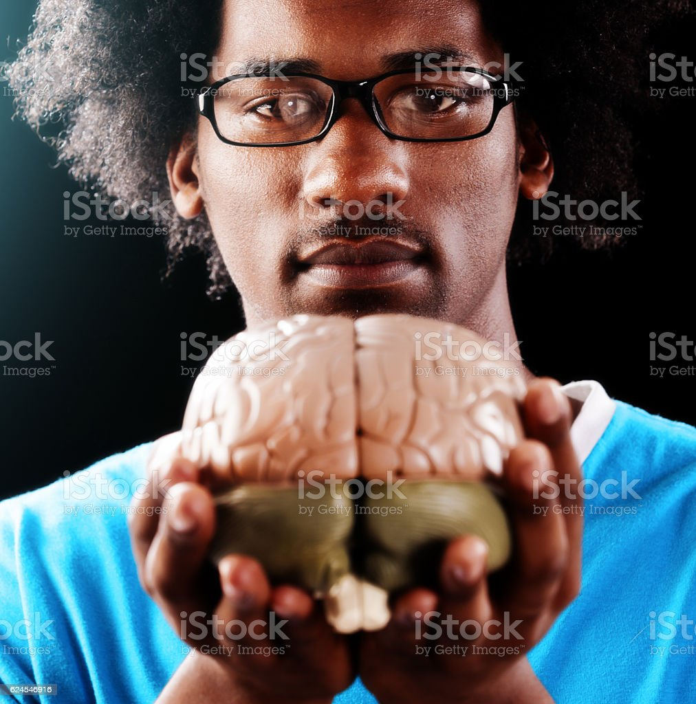Serious young man studies anatomical model of human brain stock photo