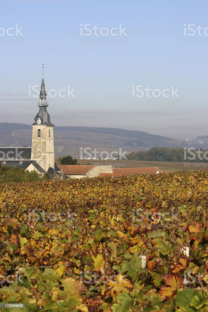 Sermiers, Champagne royalty-free stock photo