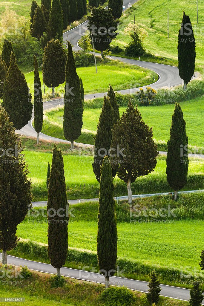 Serpentine road in Tuscany, Italy stock photo