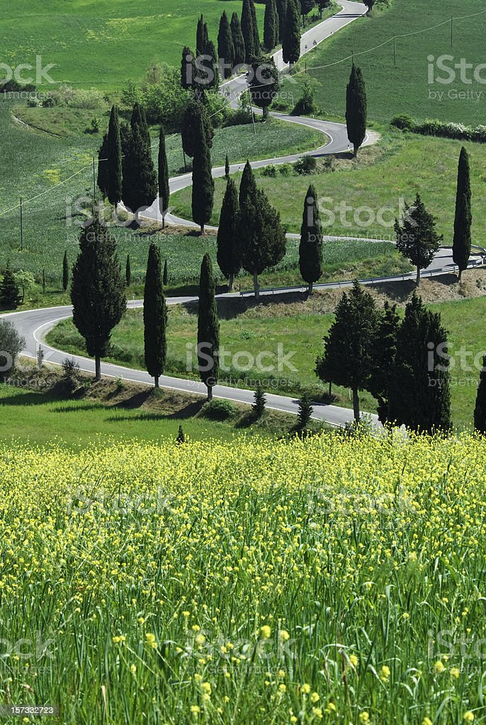 Serpentine Road, Val d'Orcia stock photo