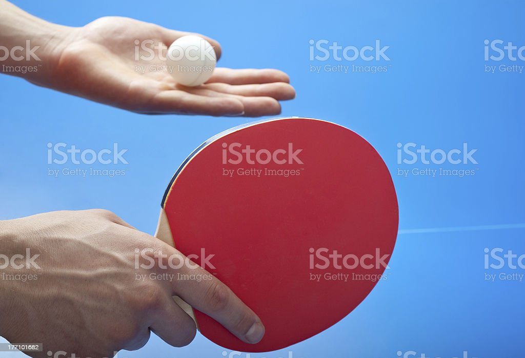 serving royalty-free stock photo