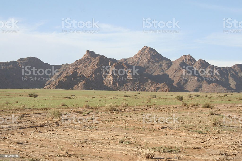 Sesriem area with green grass after rain, Namibia, Africa stock photo
