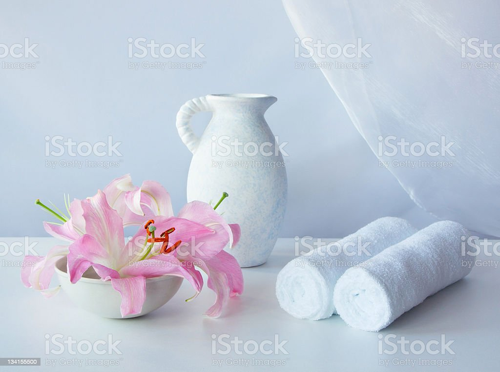 Set for the spa and sauna royalty-free stock photo