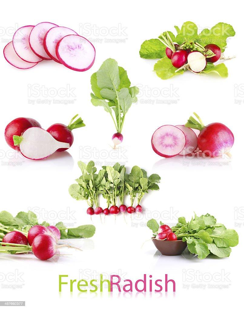 set juicy radish with green leaves royalty-free stock photo