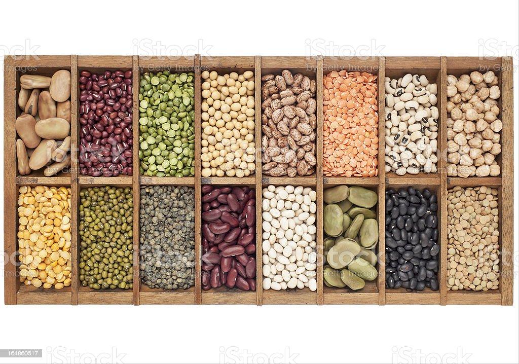 set of 16 legume samples stock photo
