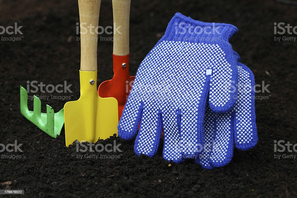 Set of colorful accessories for gardening royalty-free stock photo