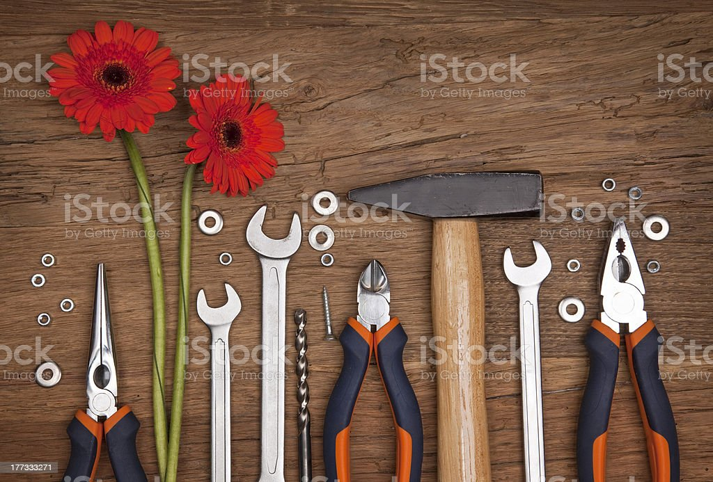 Set of different tools with flowers stock photo