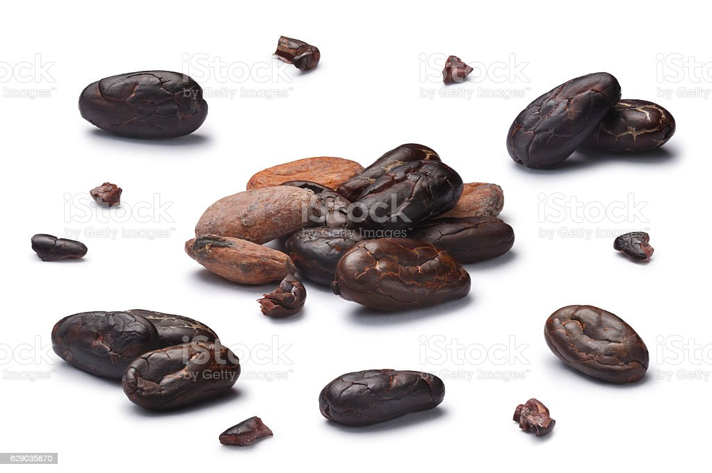 Set of dried cocoa beans, clipping paths stock photo