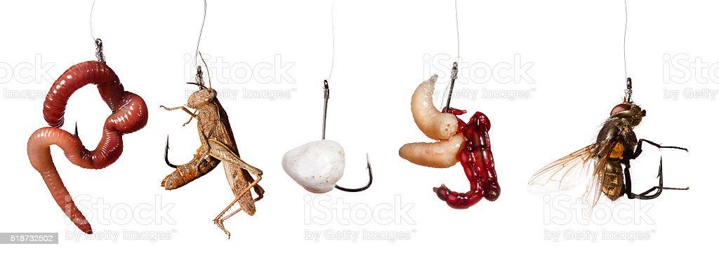 set of fishing baits on the hook isolated on white stock photo