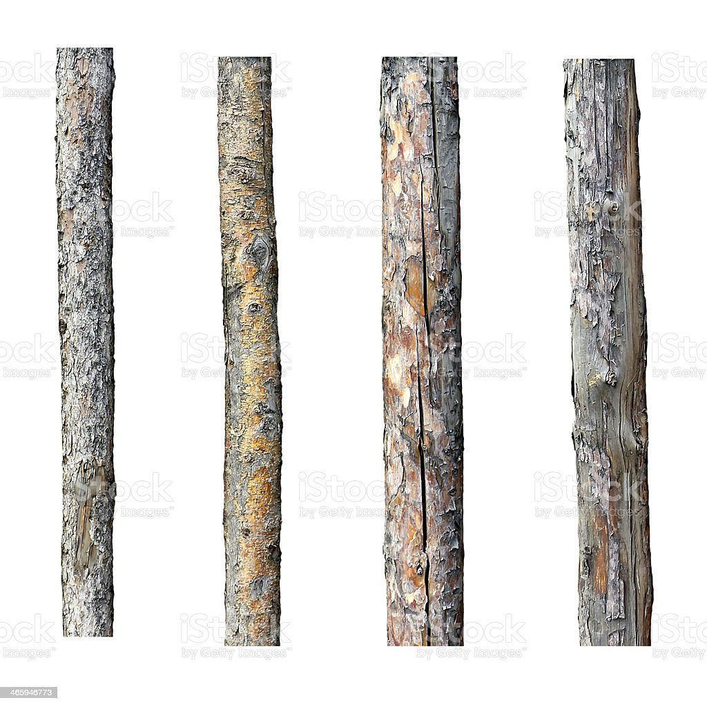 set of four timber isolated on white background stock photo