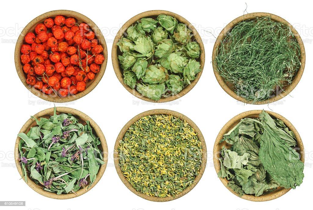 Set of healing herbs. Dried grass. stock photo