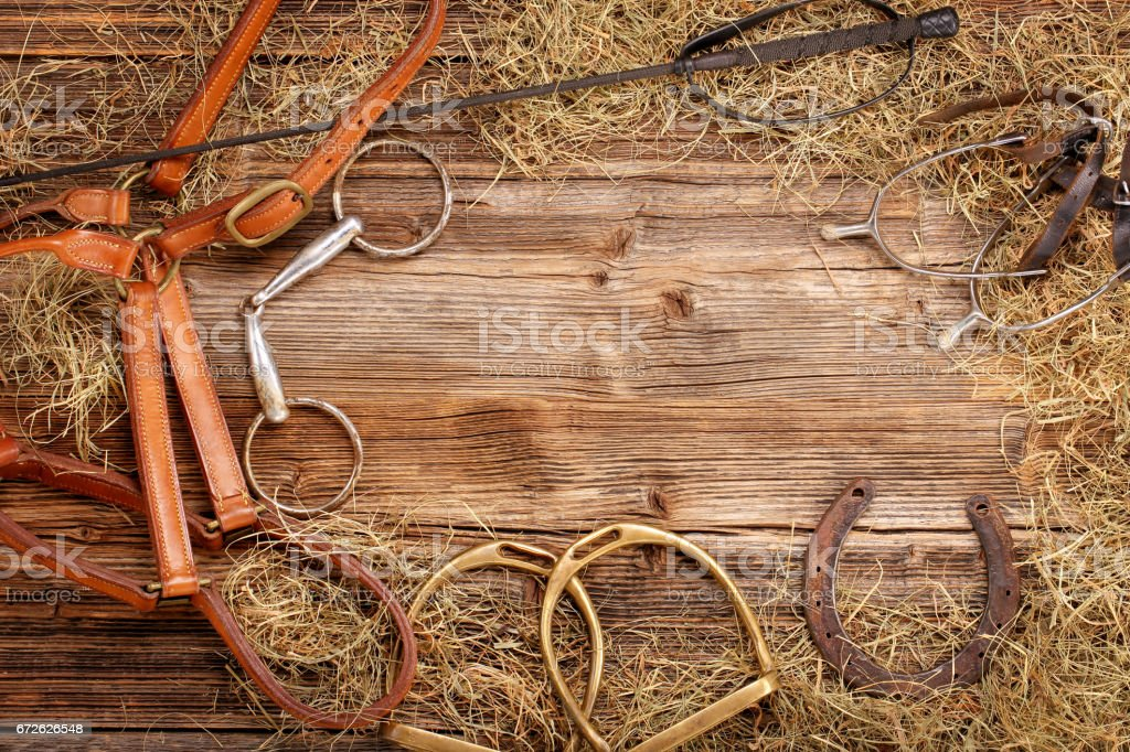 Set of horse equipment stock photo