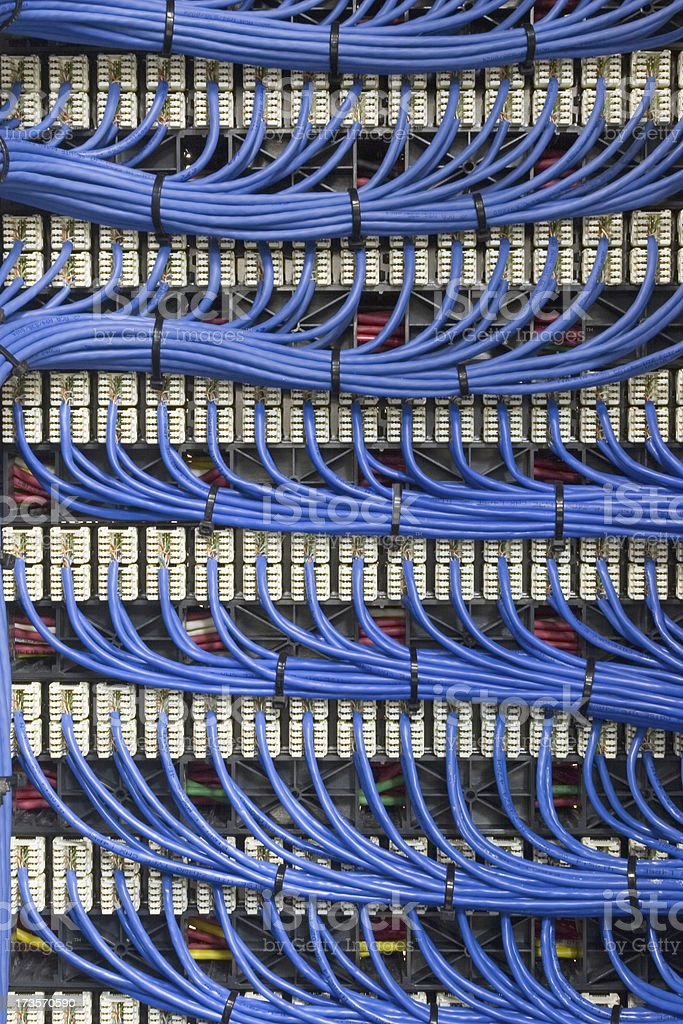 Set of long blue network cables stock photo