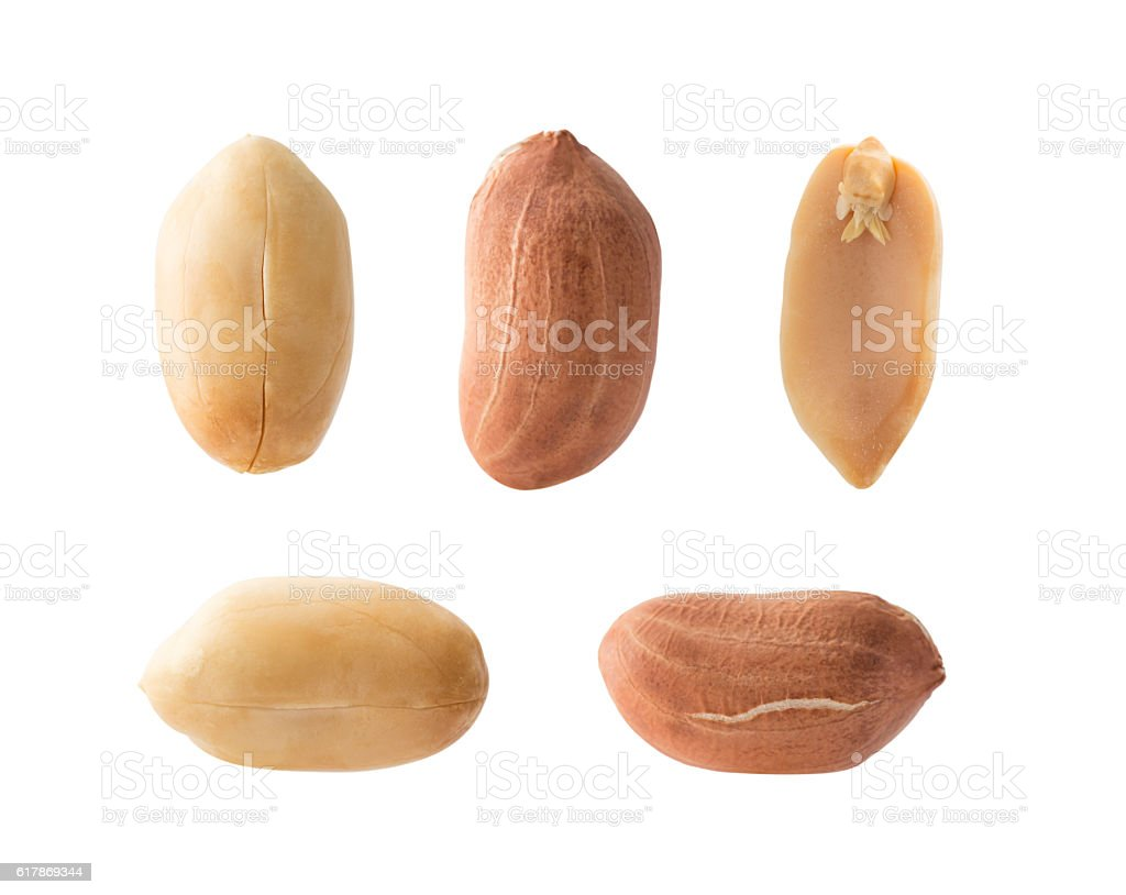 Set of peanuts stock photo