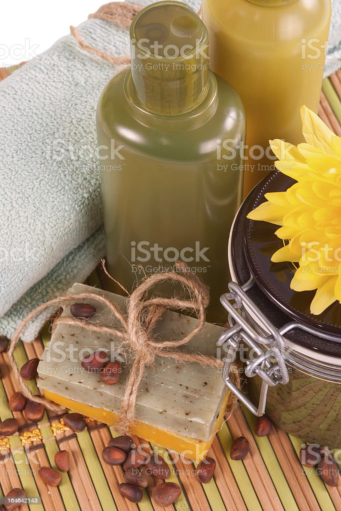 Set of Spa procedures . royalty-free stock photo