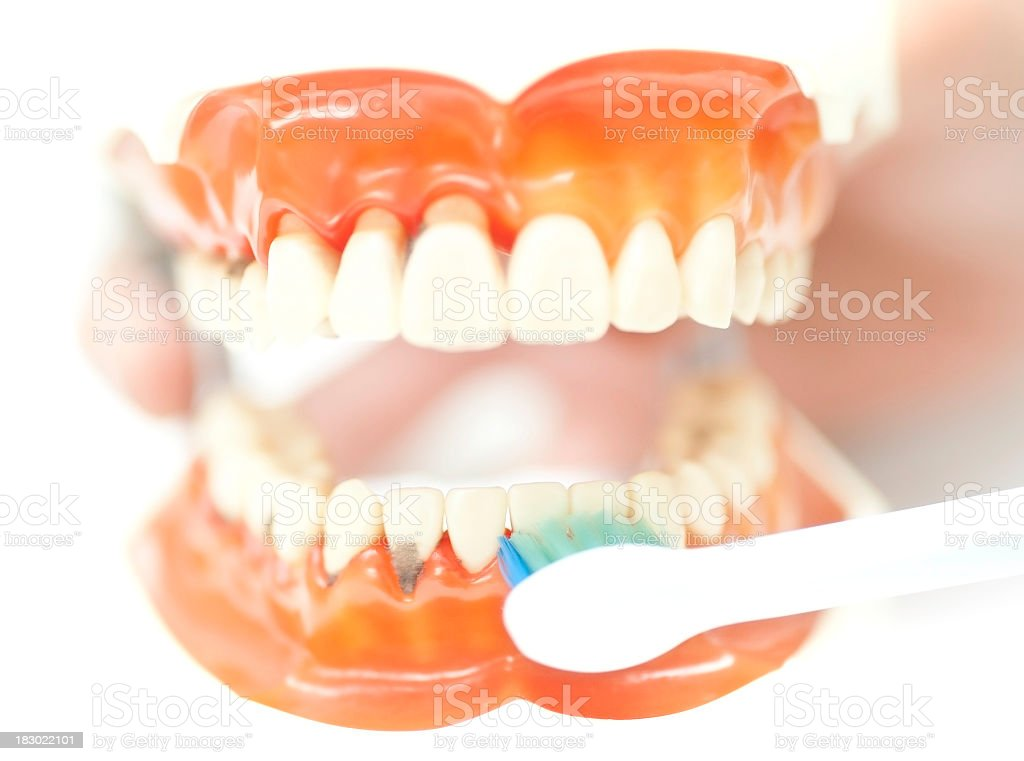 set of teeth with toothbrush stock photo