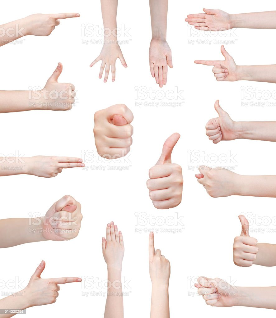 set of various female hand gesture stock photo