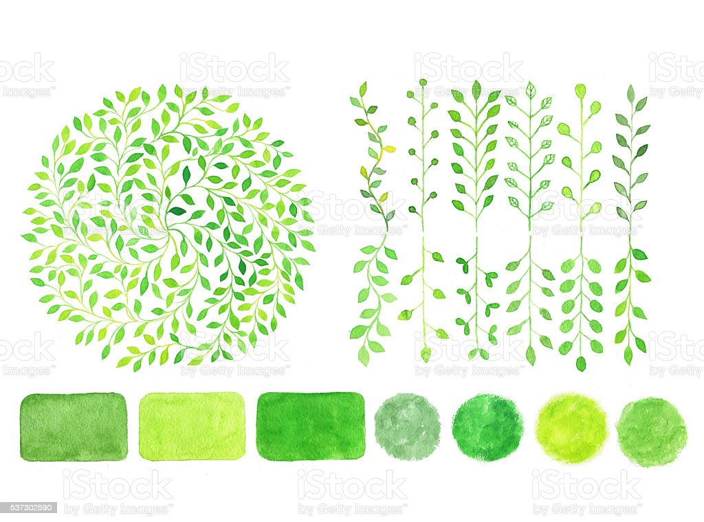 Set of watercolor green logo.Leaves, badges, branches stock photo