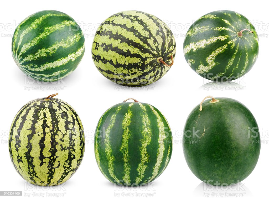 Set of watermelon fruits stock photo