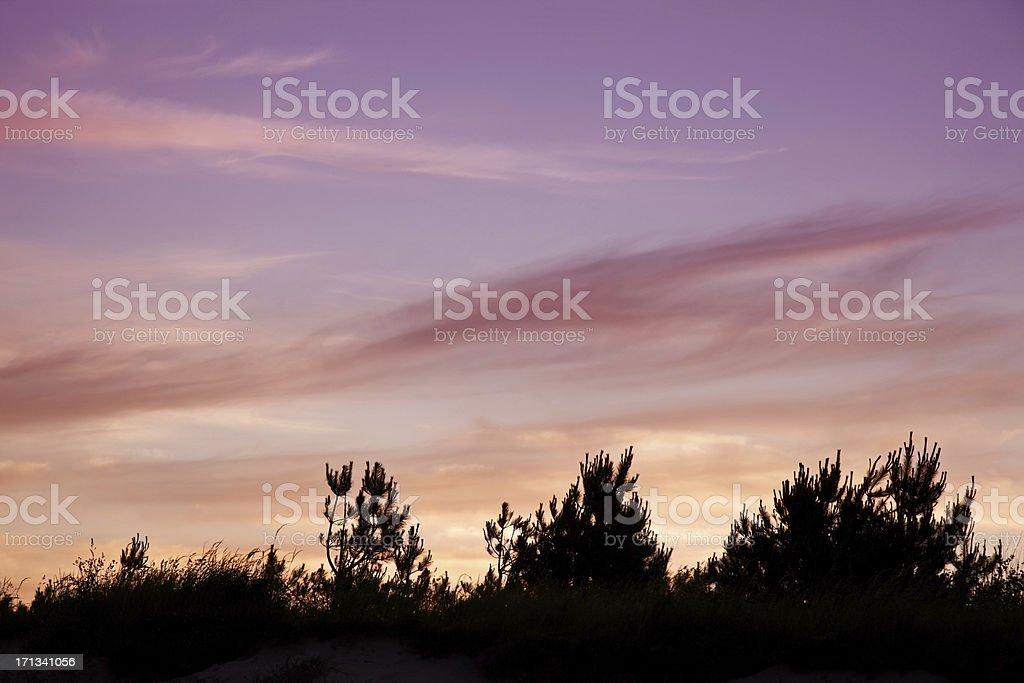 Setting sun behind hillside tree line royalty-free stock photo