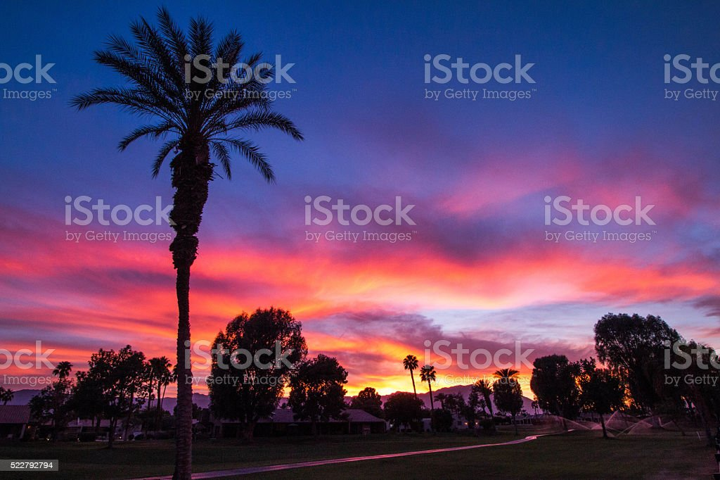 setting sun on golf course stock photo