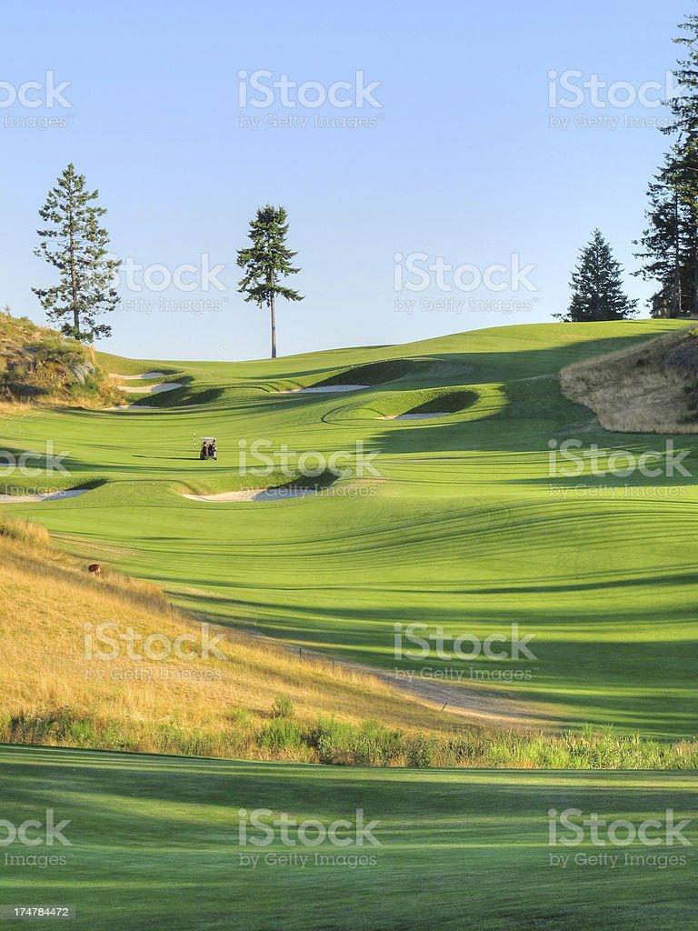 Setting sun on lush Vancouver Island golf course royalty-free stock photo