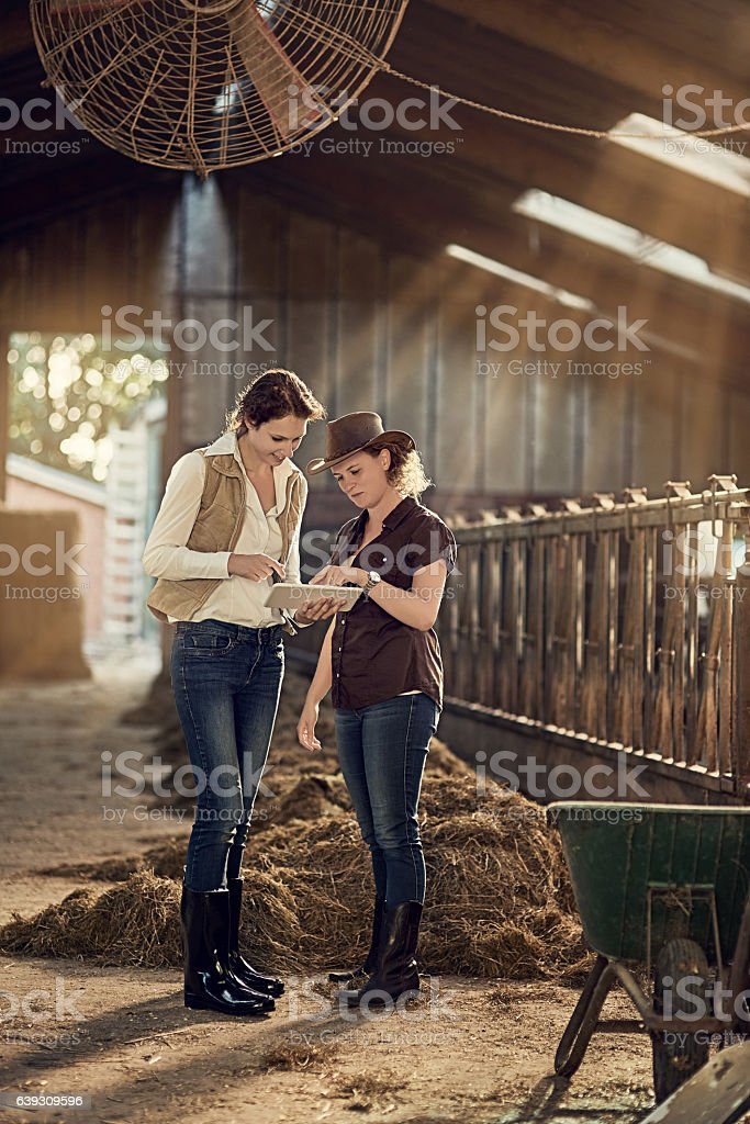 Setting up a milking schedule has never been easier stock photo