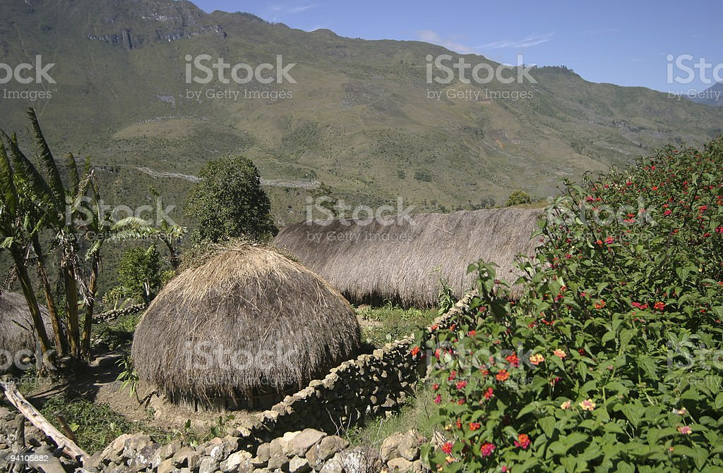 Settlement in Papua new guinean highlands stock photo