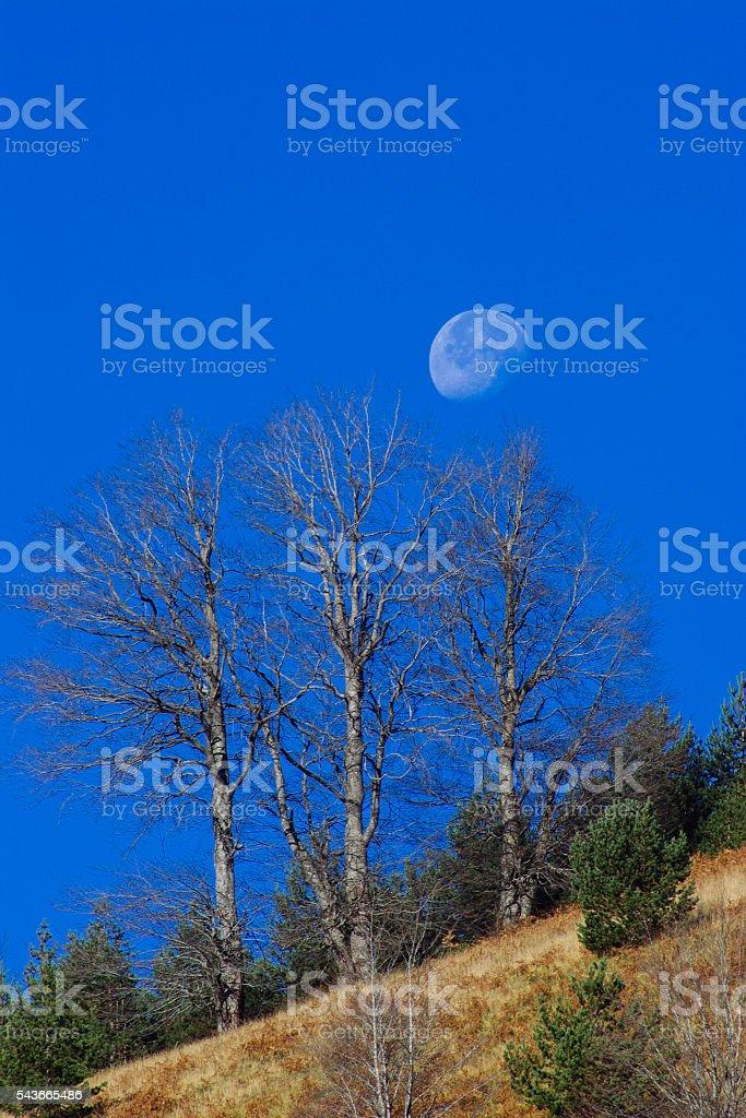 Seven Lakes Yedigoller stock photo