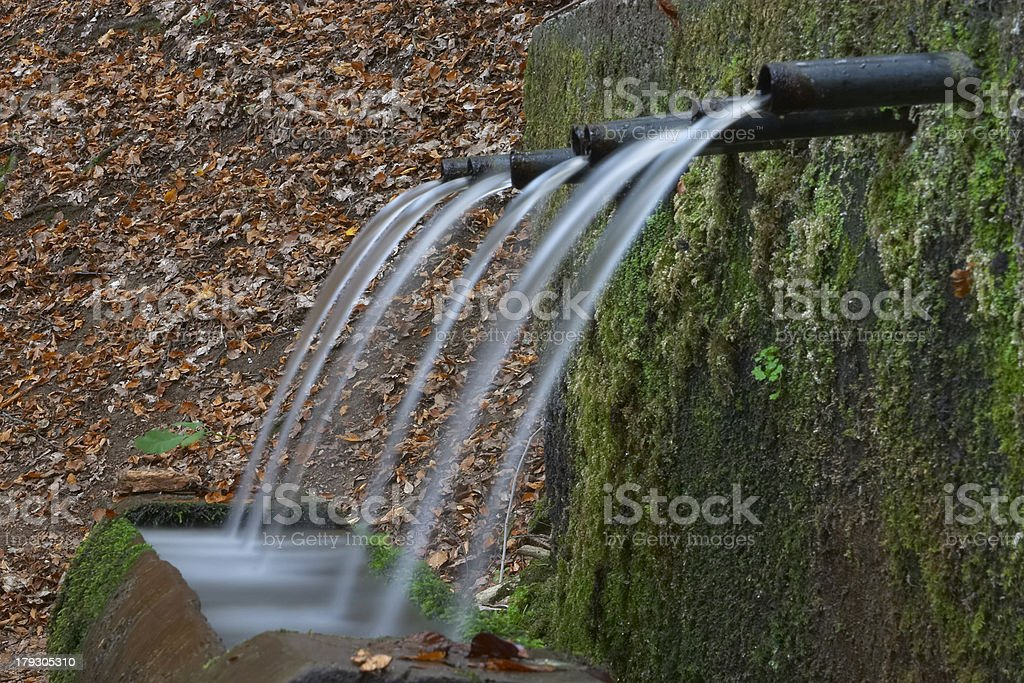 Seven Request Taps royalty-free stock photo