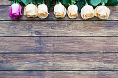 seven roses on a wooden background