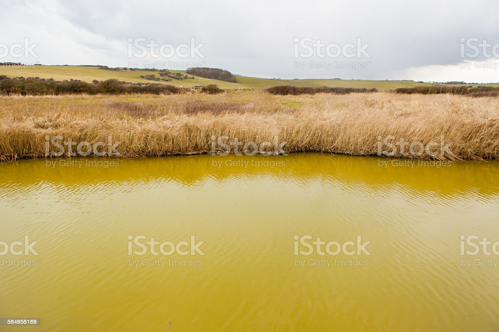 Seven Sisters Country Park stock photo