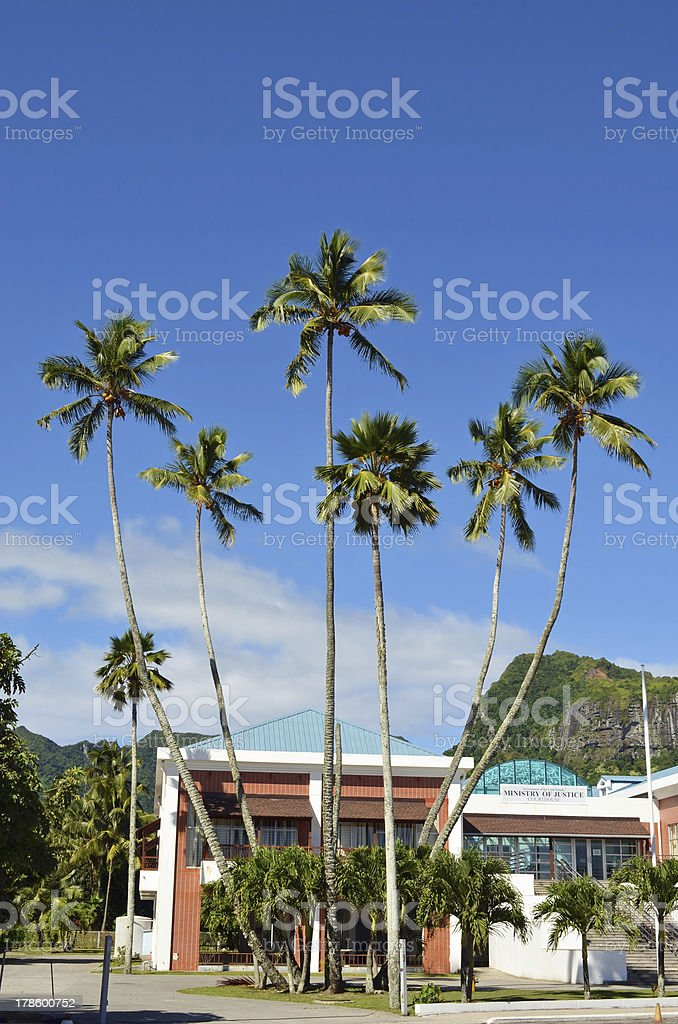 Seven Sisters (Coconuts Trees) in Rarotonga, Cook Islands royalty-free stock photo