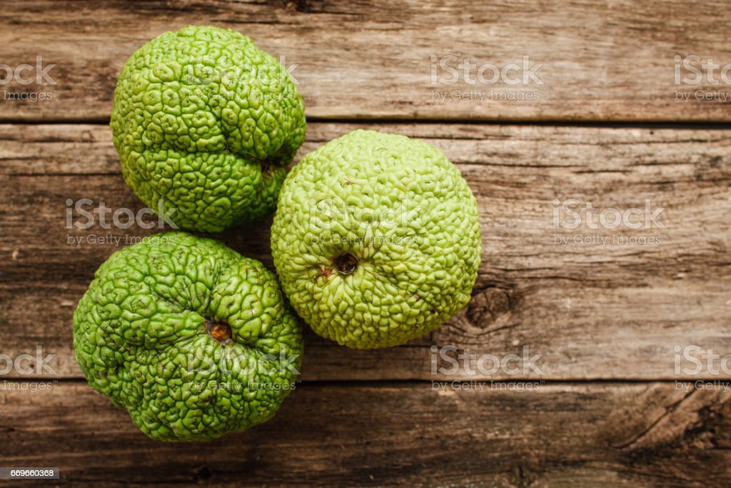 Several Adam's apples on wood flat lay stock photo