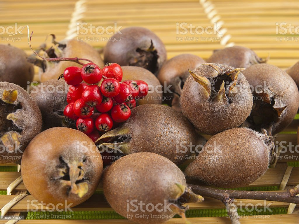 Several common medlar and red berries stock photo