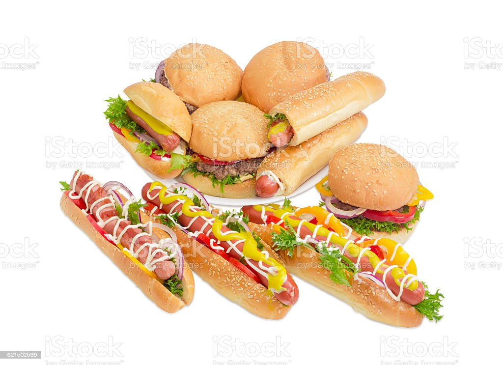 Several different hamburgers and hot dog on a light background stock photo