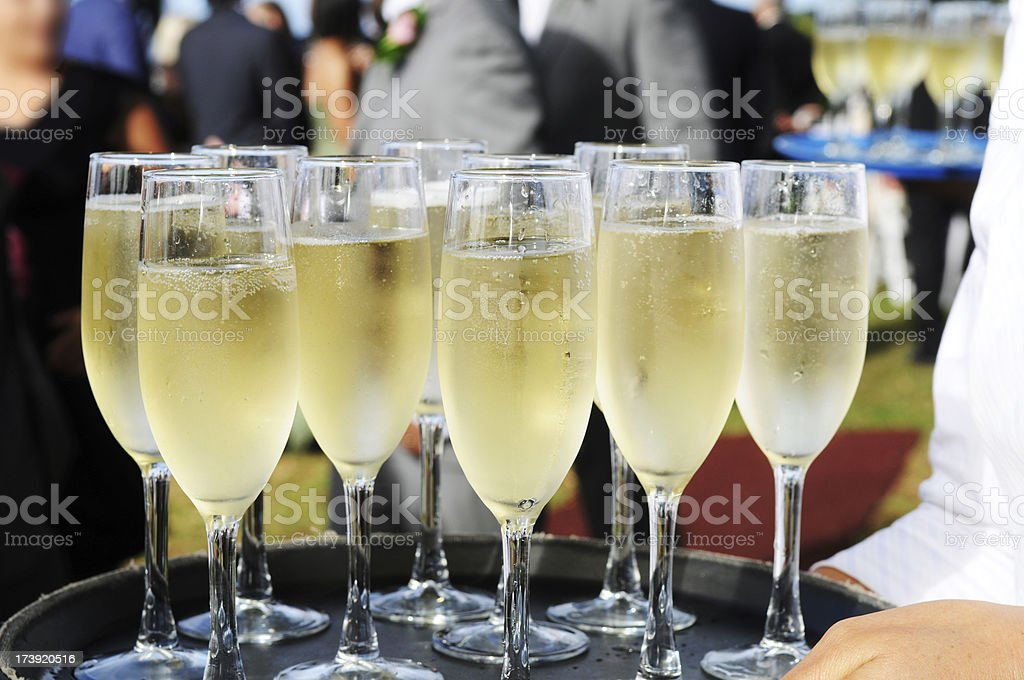Several glasses full of champagne on a tray royalty-free stock photo