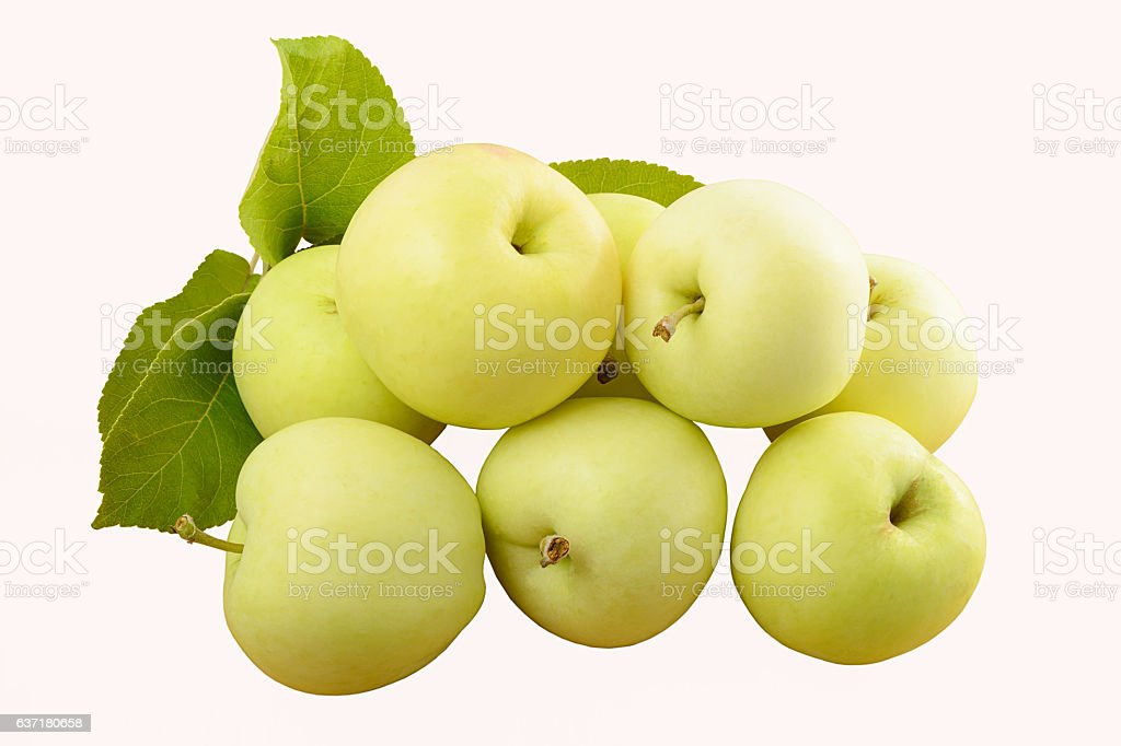 several green apples with leaves on a white background stock photo