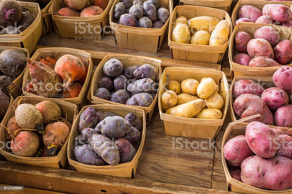Several kinds of Heirloom Potatoes stock photo