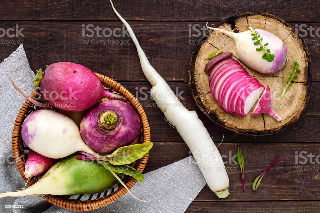 Several kinds of radish stock photo