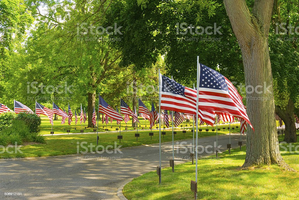 Several Rows of American Flags against greenery (P) stock photo