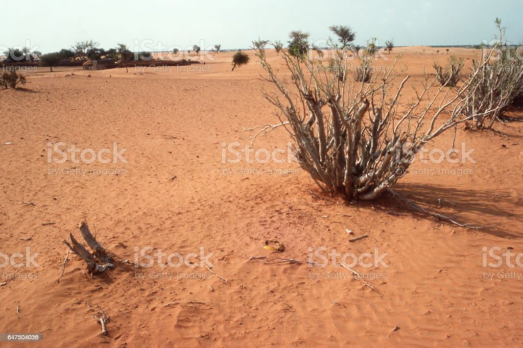 Severe erosion and wind drifting sand after Sahel Drought in northern Burkina Faso near Gorgadji Africa stock photo