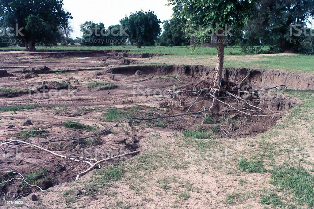 Severe Stream Erosion north of Ouahigouya Burlina Faso West Africa stock photo