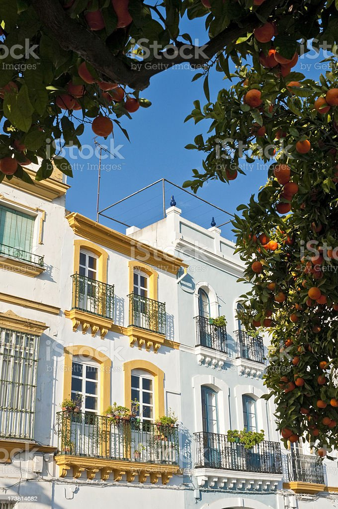 Seville orange trees and villas royalty-free stock photo
