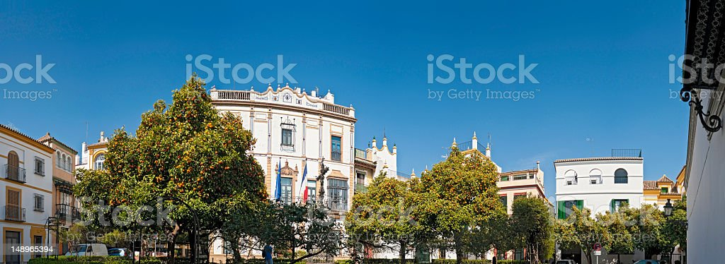 Seville orange trees Santa Cruz stock photo