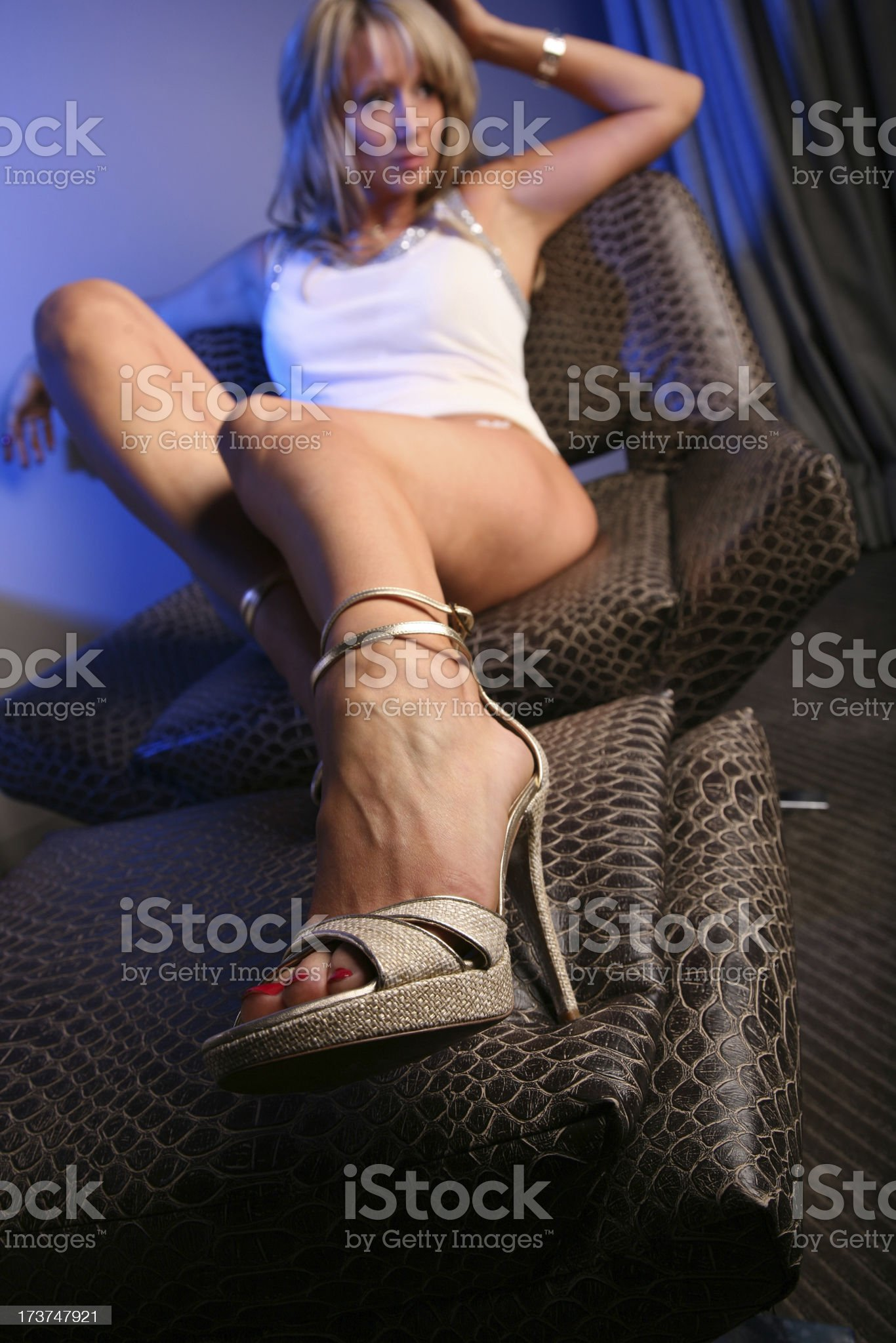 Sexy High Heel Shoes royalty-free stock photo