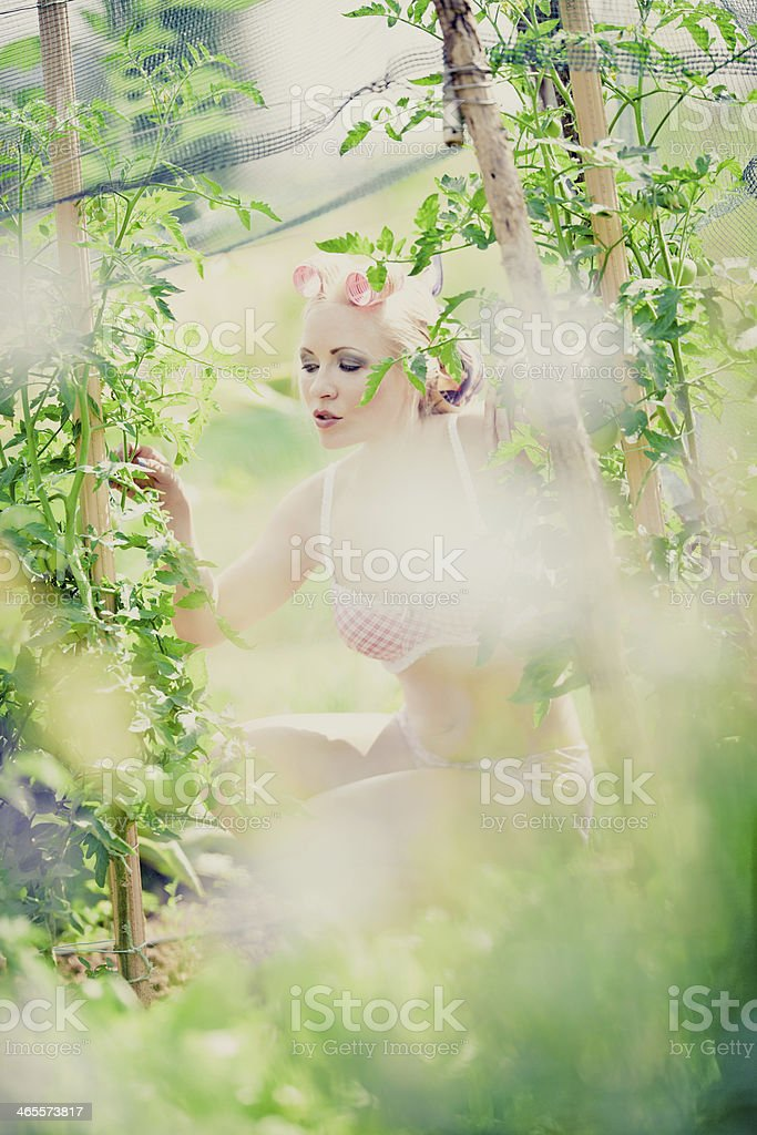Sexy woman in vegetable garden royalty-free stock photo