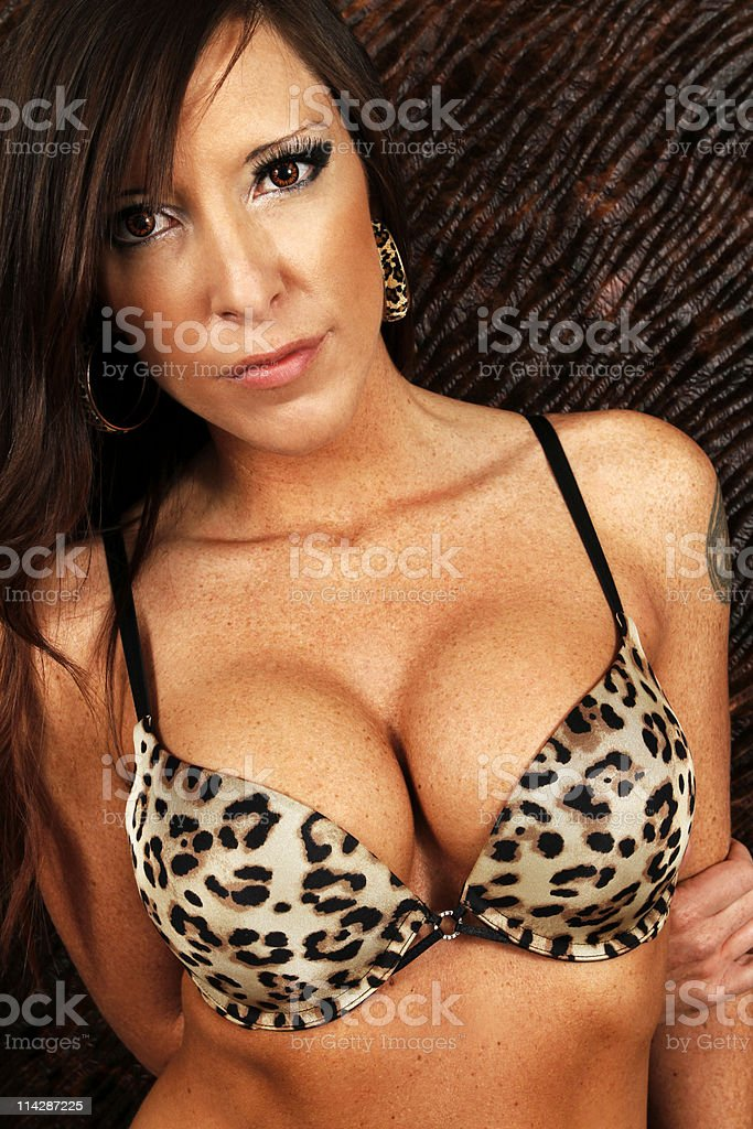 Sexy women with leopard underwear royalty-free stock photo