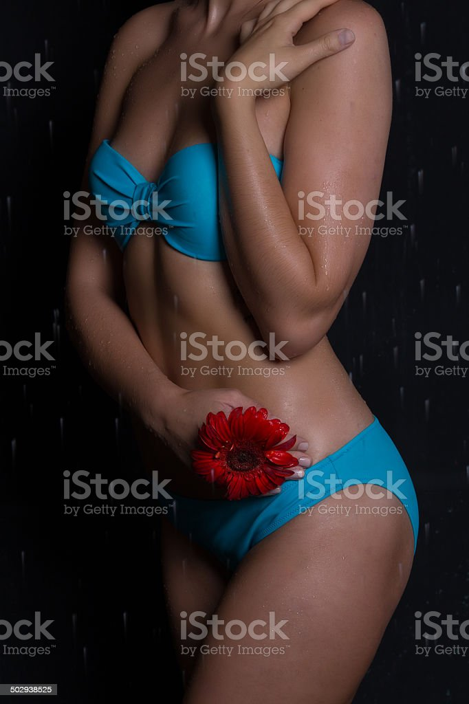Sexy young woman stock photo